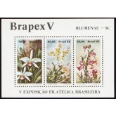 B-051 - BRAPEX V