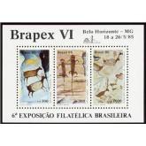 B-069 - BRAPEX VI